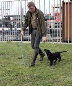 puppytraining 3 volgen